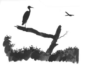 heron+plane_cropped